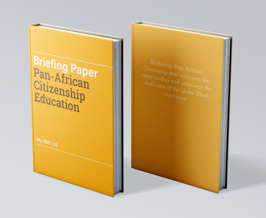 PACE Briefing Paper - Book Cover copy
